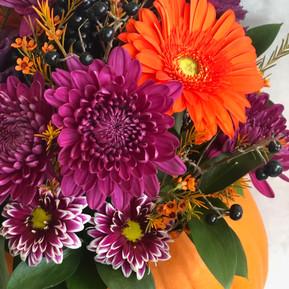 Purple pumpkin arrangement