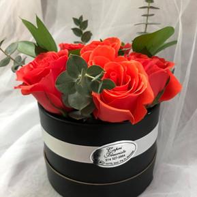 Half dozen coral roses in black round box