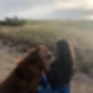 Screen Shot 2018-08-18 at 4.32.33 PM.png
