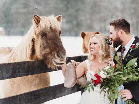 Winter Wonderland Wedding in Thurmont, MD