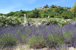 La Bastide de Lussan
