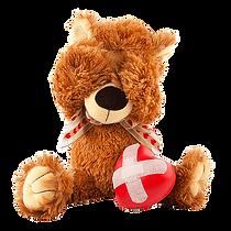 Teddy-png_edited3_edited.webp