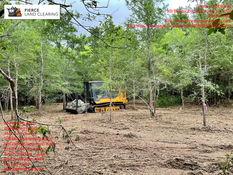 Know More About Land Clearing Companies In Austin, Texas