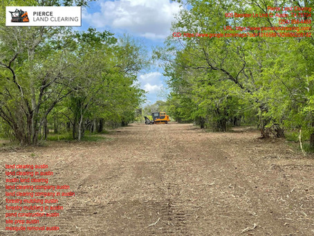 The Rising Popularity of Land Clearing Companies in Austin, Texas