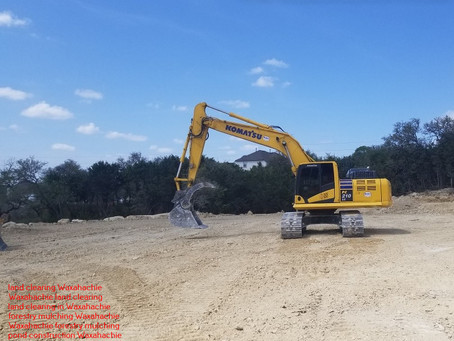 Waxahachie, TX Mesquite Removal - How it Works