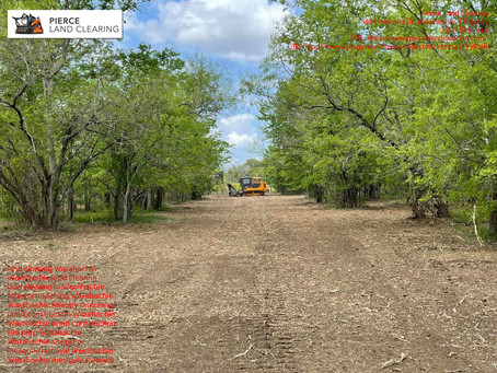 Waxahachie, TX Mesquite Removal and Land Management Services