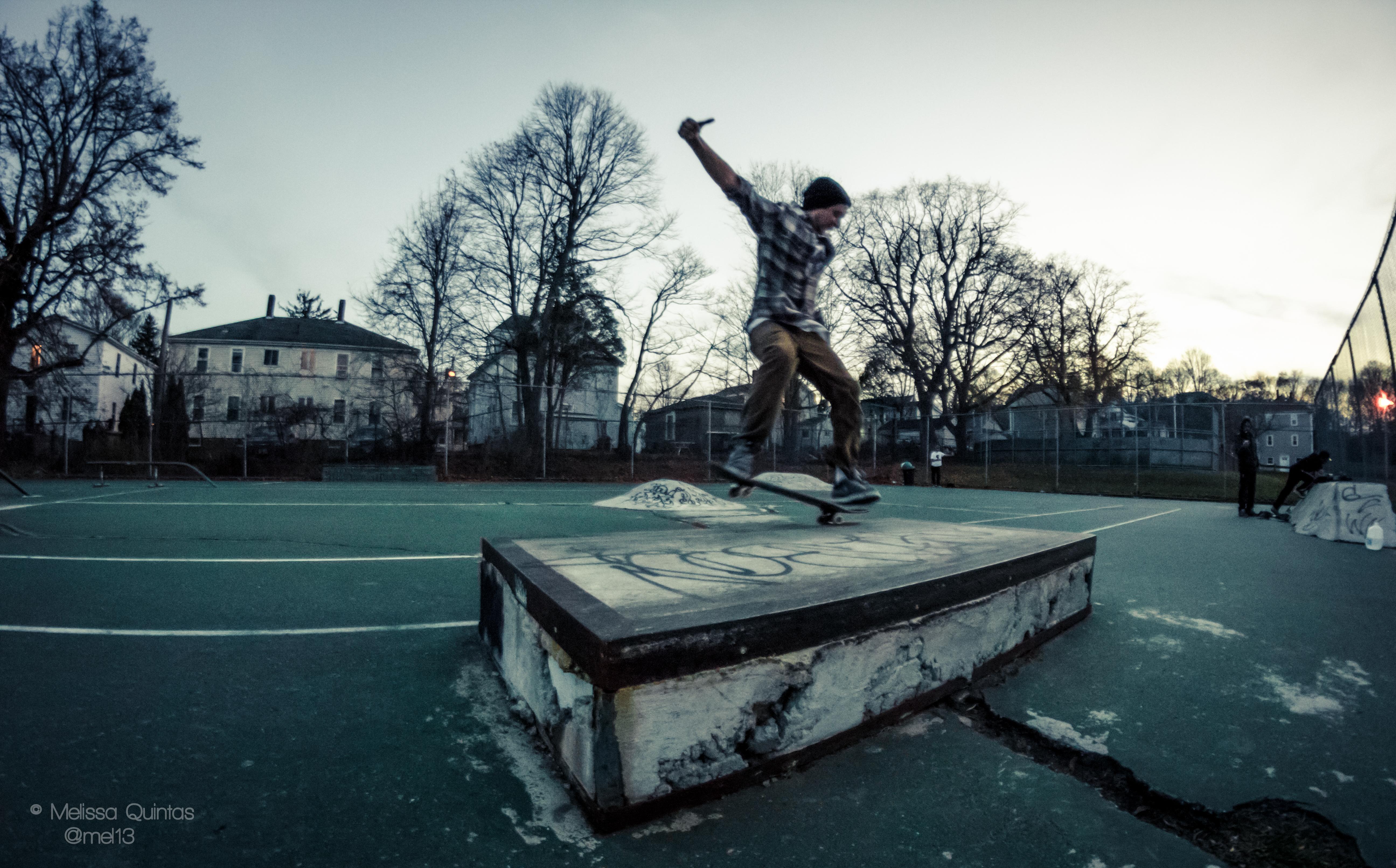 Flickr - Skate