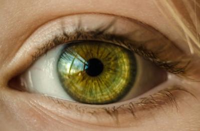 Oculus humanus - az emberi szem