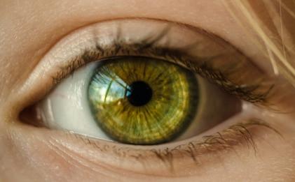 szem, látás, éleslátás, retina, szaruhártya, cornea, szemlencse, szemizmok, látóideg, üvegtest,