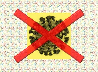 Antivírus infó