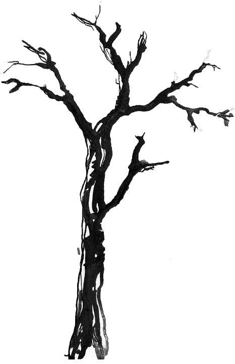 Barren_branch.jpg