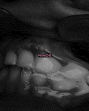 MINDSCover-web-version.jpg