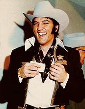 Elvis-elvis-presley-40848808-300-382.jpg