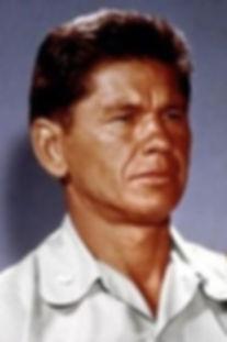 Charles Bronson.JPG