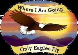 Only Eagles Fly Program