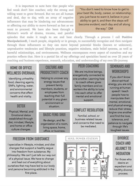 DM Brochure 2