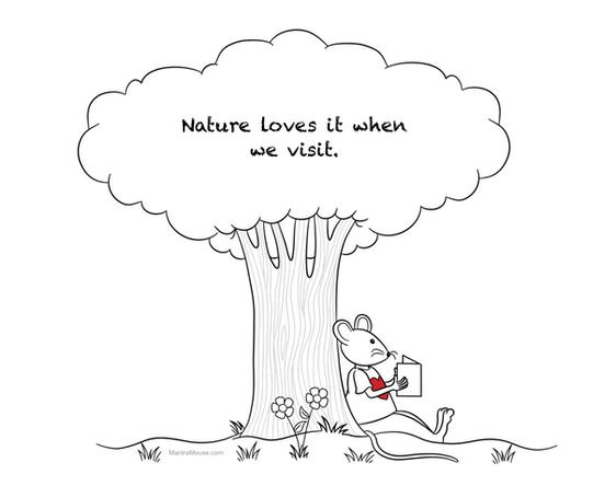 Nature Visit