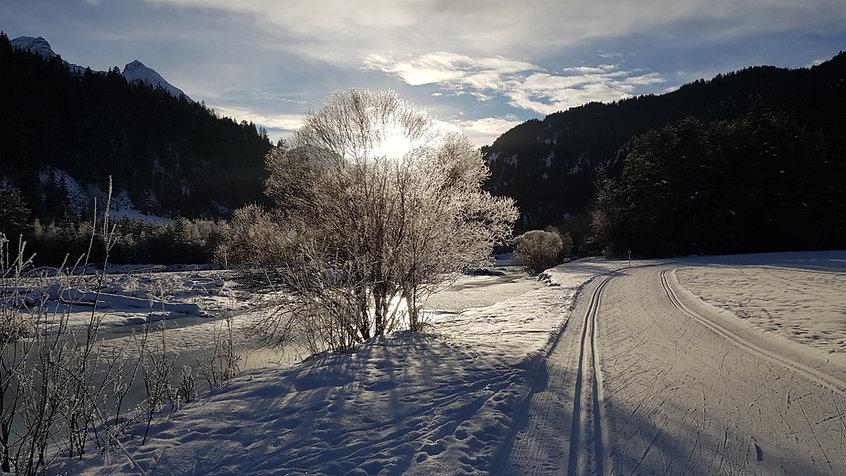 Loipe durch die Inn-Auen bei Strada, Unterengadin (c) Risch Tratschin www.rutitsch.com