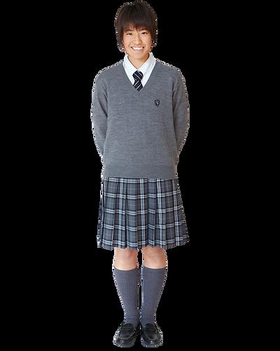 藤村女子高校,セーター,制服