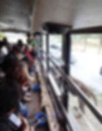2014_safari02.jpg