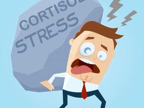 Cortisol, estrés, insomnio y vitamina C 😟🥱🍋
