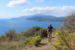 1097-mountainbike-sul-monte-calamita