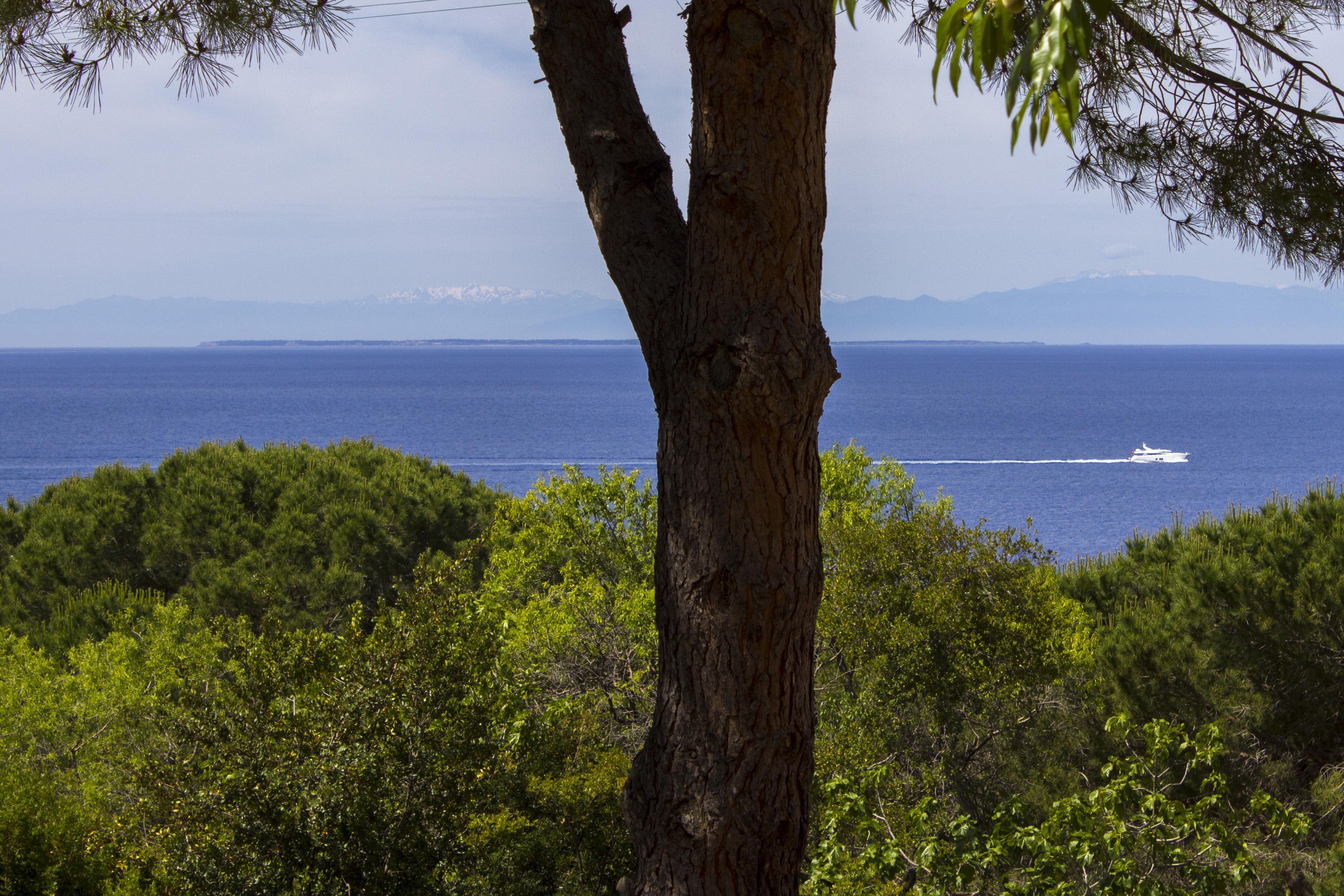 vista mare: Corsica e pianosa