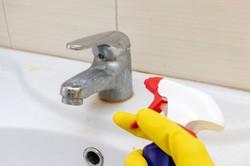 Cleaner PRO Liquid