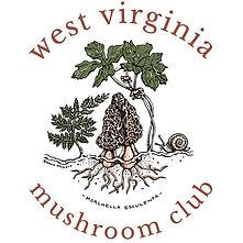 mushroom_club_tee-01.jpg