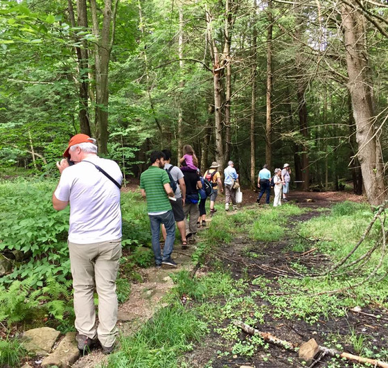 Save the Date! 2018 WV Mushroom Foray - July 20-21 at Canaan Valley Resort