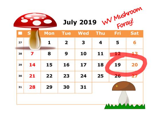 2019 WV Mushroom Foray News