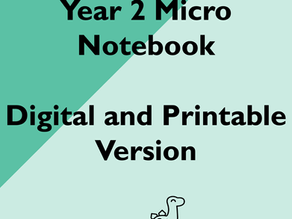 New Product: Year 2 Micro Notebook