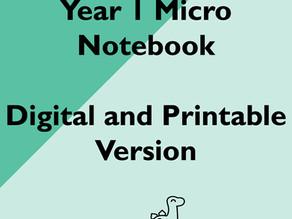 Year 1 Micro Notebooks