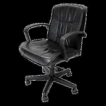 EuroTech Esteem 555 Executive Chair