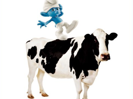 Breast Cancer Blog - Episode 6 : Mad Cows and Smurfs