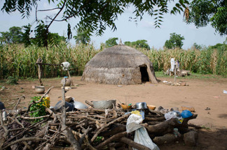 Home of a Mossi group
