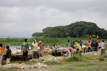 Bringing in the fish at the lake in Awassa