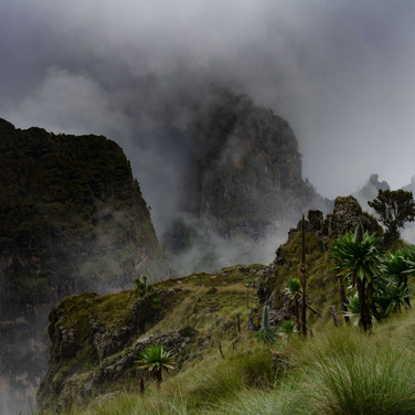 A misty scene in the Simean Montains