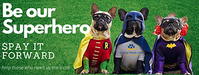Be our superhero.png