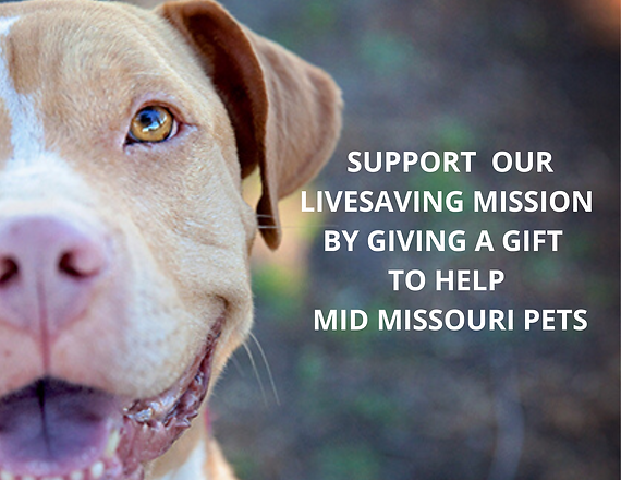 SUPPORT OUR LIVESAVING MISSION BY GIVING