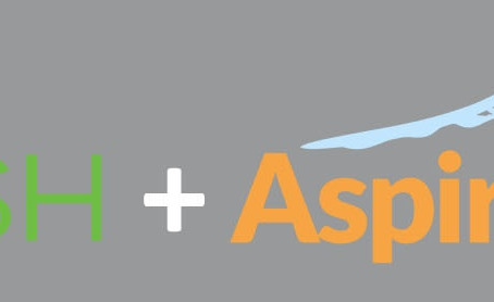 ASPIRATION HOSTING AND  BLINDHASH PARTNER TO PROTECT ECOMMERCE SITES