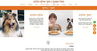 אתר וויקס בעברית