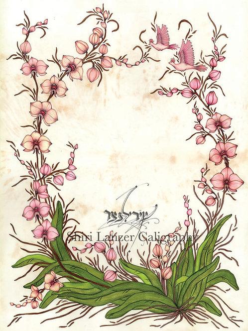 סחלבים - כתובה מודפסת 9
