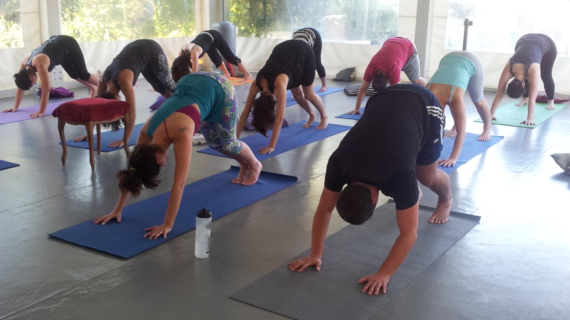 שיעורי יוגה תמיוגה.jpg