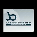 ג'וד ברק - מומחית אקסל
