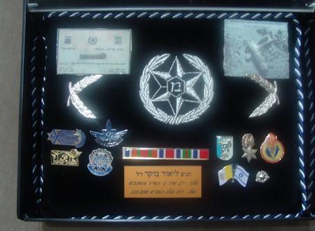 כרית הדרגות | Pillow with medals, awards and ranks