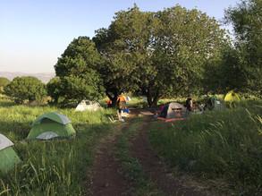 אוהלים בירוק.jpg