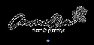לוגו קמילה