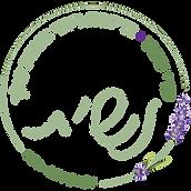לוגו-למסך-עם-שקיפות.png