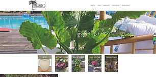 בוטניקו, צמחים לארועים